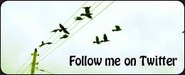 Twit Twit Twit