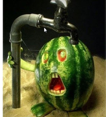 Unusual and Funny Water Melon Pics