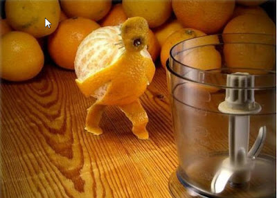 Funny Oranges Photos and Pictures