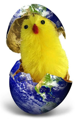 Cute Photo Of Chicken In A Globe