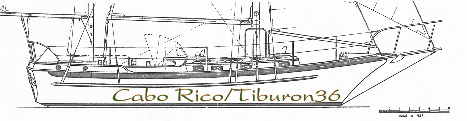 Cabo Rico_Tiburon36
