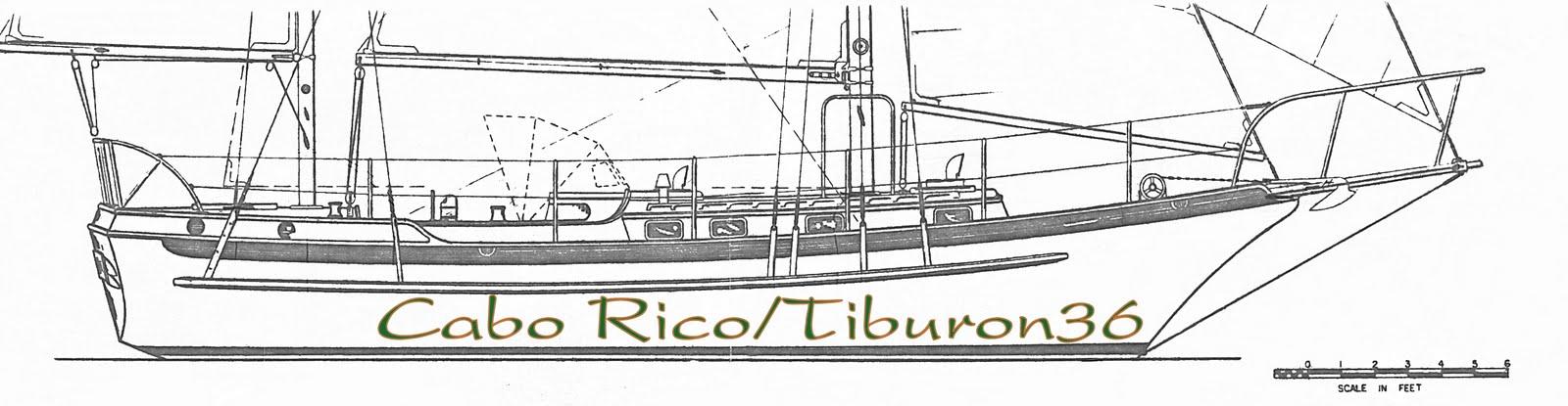 Cabo Rico_Tiburon36