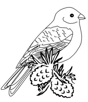 coelho para colorir. de Pássaros para colorir