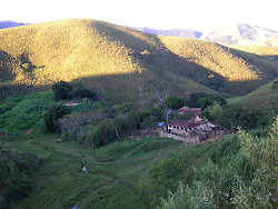 Atividades na fazenda São Pedro