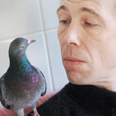 Pokey the pigeon