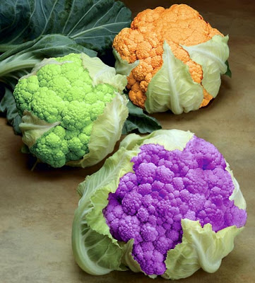 The green, orange and purple varieties of cauliflower