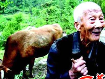 Li Xicai