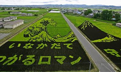 Rice Art