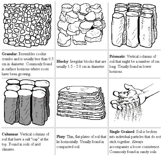 Whatisscience Types Of Soil