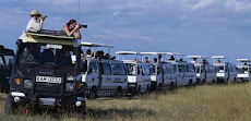 Visiting Kenya then;Contact Silver Dove Tours and Travel at Occidental Plaza 3rd fl,Westlands