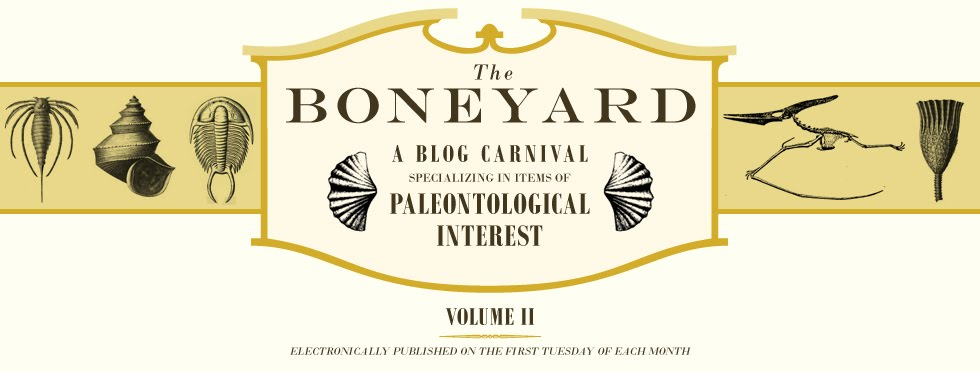 The Boneyard Blog Carnival