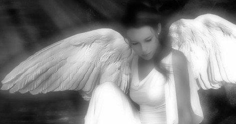 [angel+de+amor4.JPG]