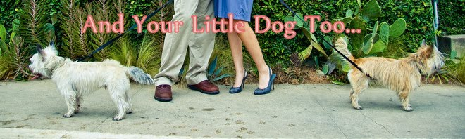 And Your Little Dog Too....
