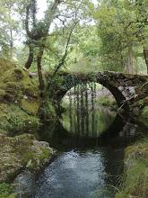 Ponte Rio Rodas Covide