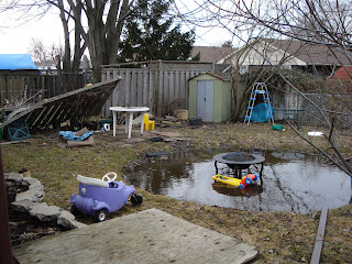 Backyard Mess, Gross, Disgusting, Dirty