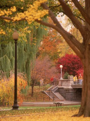 Public Gardens in Autumn Boston MA