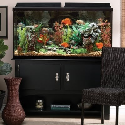 Aqueon 26 Gallon Deluxe Bow Front Aquarium Kit