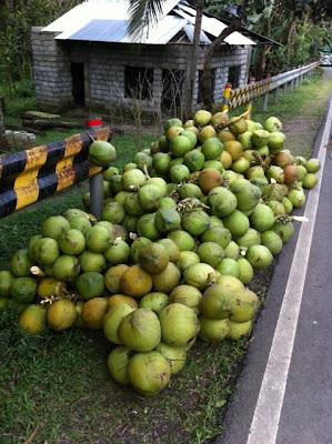coconut buko ng batangas