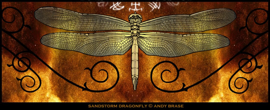 The Living Bible Symbolism Of The Dragonfly