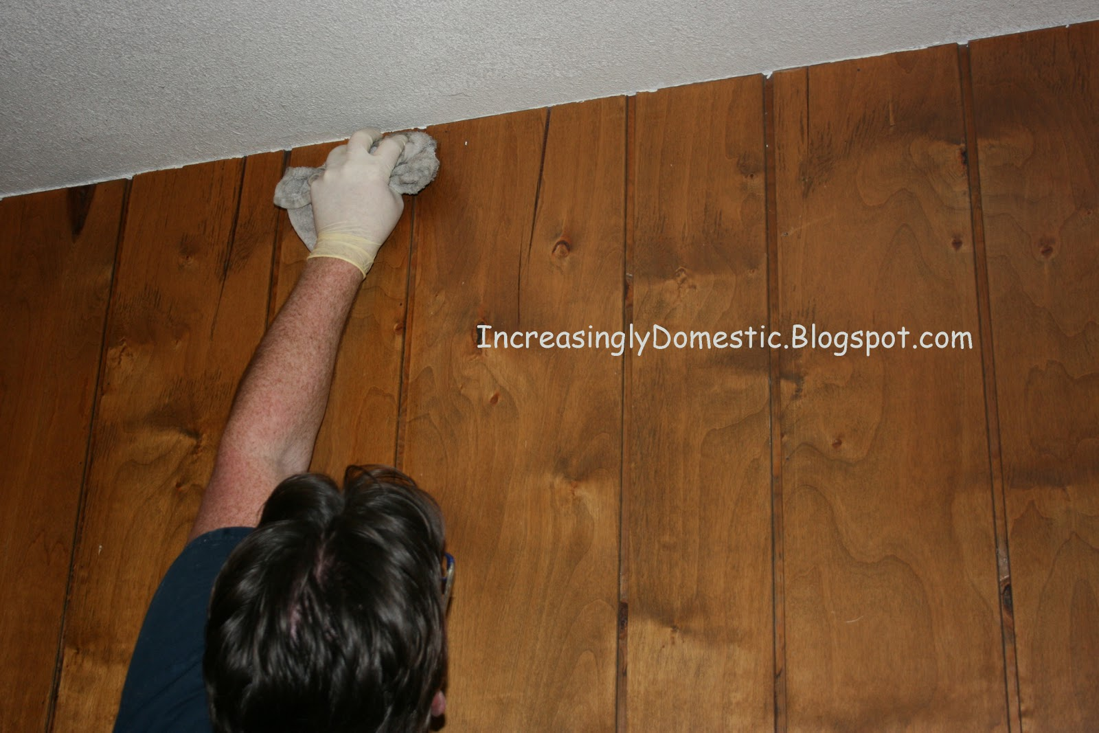Increasingly Domestic Painting Wood Paneling