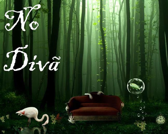 NO DIVÃ