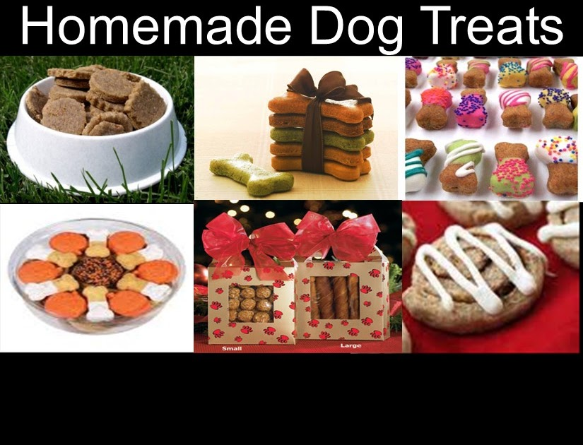 How To Make Dog Stuff