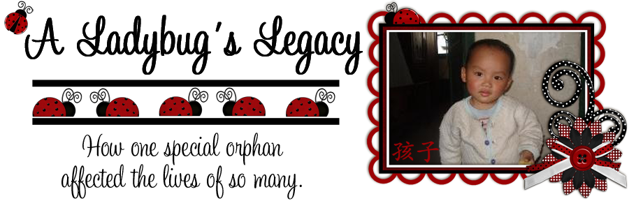 A ladybugs legacy