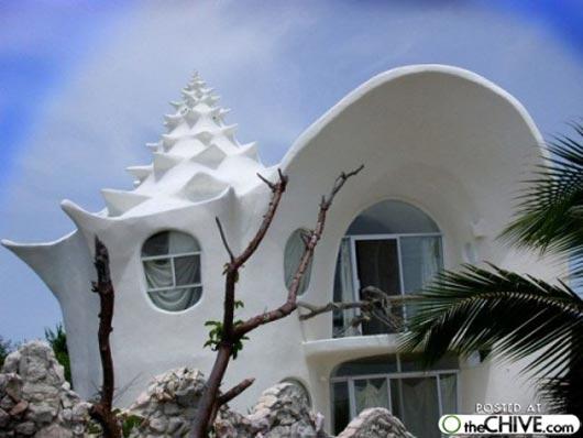 Shellhouse Isla Mujeres Mexico