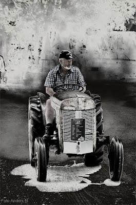 Ferguson Grålle traktor grå tractor TE20 little grey fergie gråtass tändkulans dag 2010 degeberga foto anders n