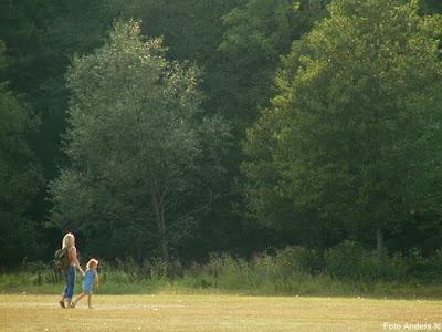 mor dotter förälder barn sagolikt skimmer motljus äng gräsmatta skog träd vandrar springer går Olofström flygfältet marknadsplatsen foto anders n