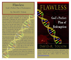 Flawless, God's Perfect Plan of Redemption