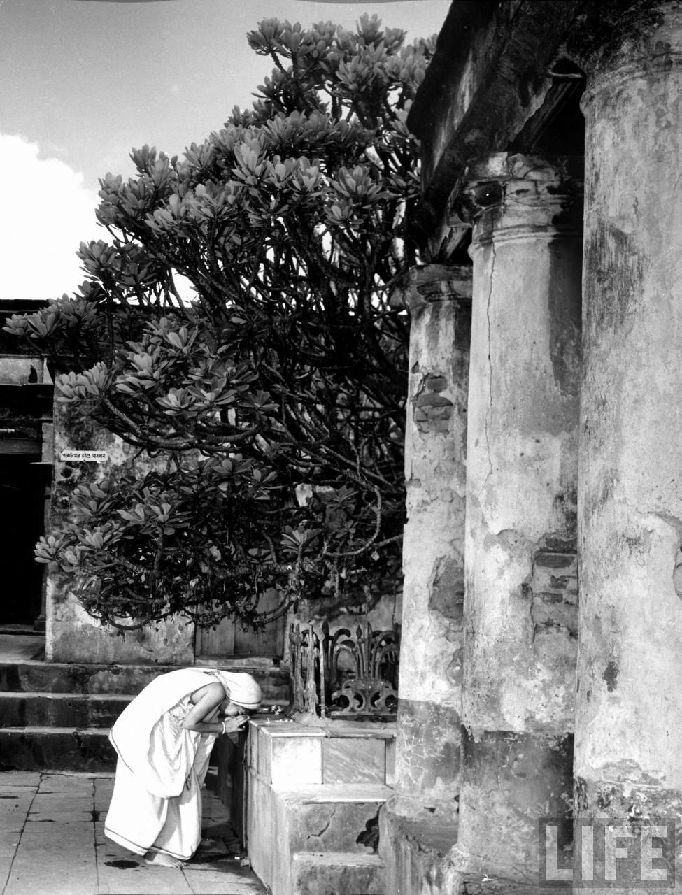 Hindu woman praying at sacred tree at the Temple - 1946