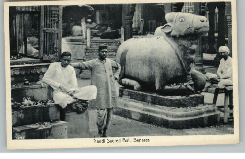 Statue of Nandi - the Sacred Bull - Benares India - 1910s Postcard