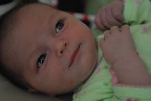 Mollie - 1 Week