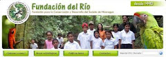 Nuestro sitio web
