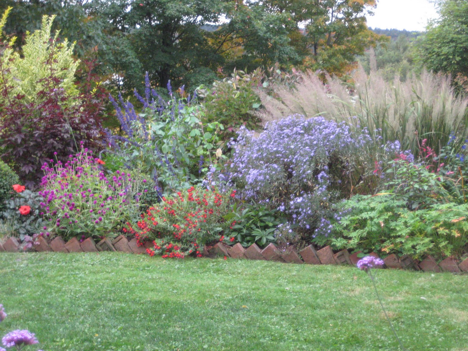 The gardener 39 s eye the mixed border in early october for Grasses for garden borders