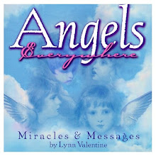 Angels Everywhere - softcover