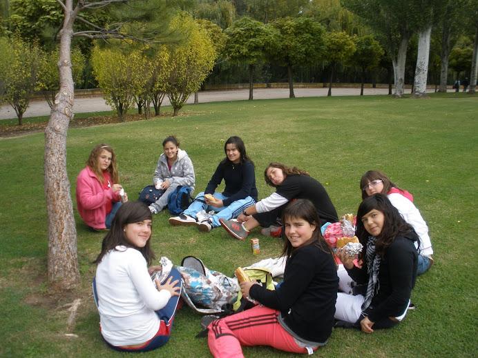 Excursión Logroño
