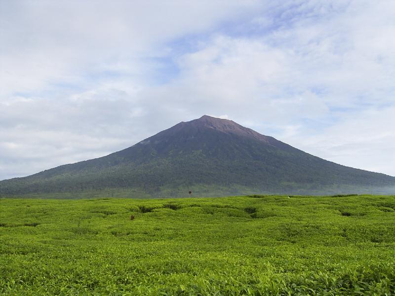 Cerita Mistis Gunung Kerinci, Misteri Orang Pendek