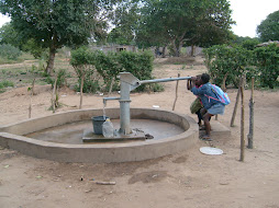 Project in Mozambique