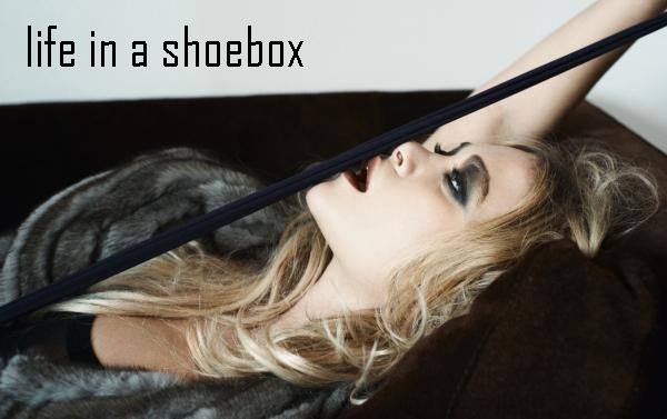 life in a shoebox