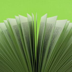 Green Team Gazette: October 2010