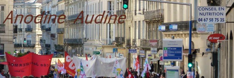 Anodine Audine