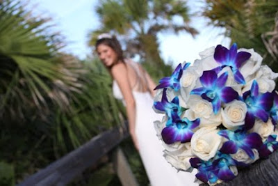 Florida Beach Wedding Flowers: White Rose and Blue Orchid Wedding ...