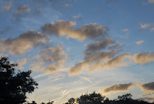 Strawberry Skies