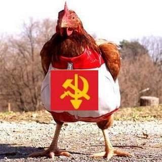 Com+Chicken.jpg