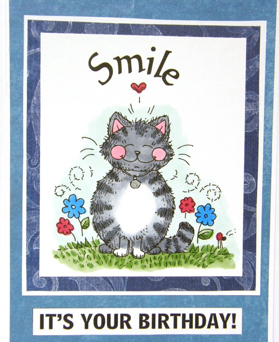 Birthday Greetings From The Cat Pictures to Pin – Send Birthday Card on Facebook
