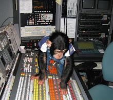 TD Monkey