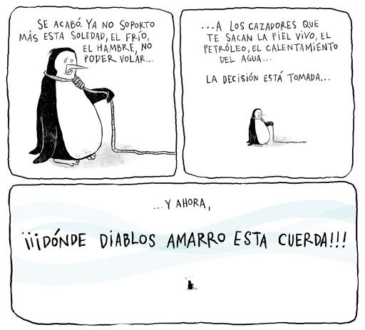 imagenes para reir Pinguino_suicida-1