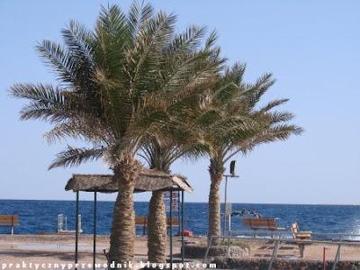 Hurghada wakacje w Egipcie